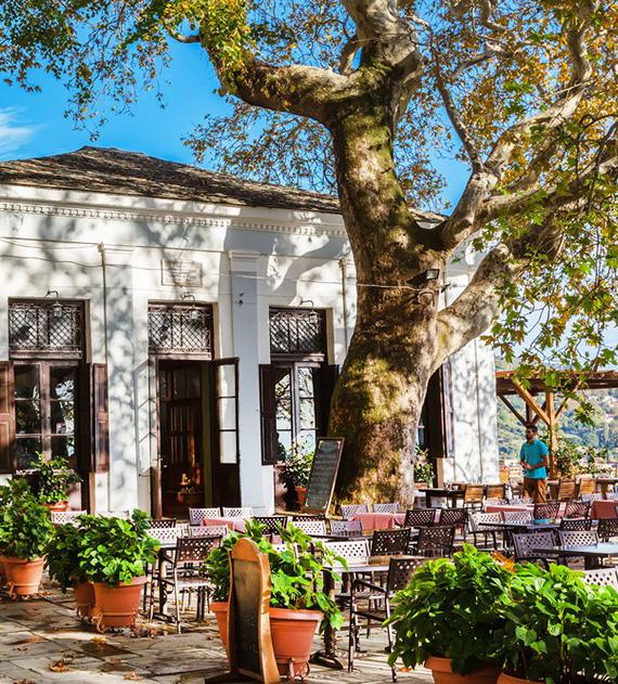 makrinitsa bazaar pelion hotels