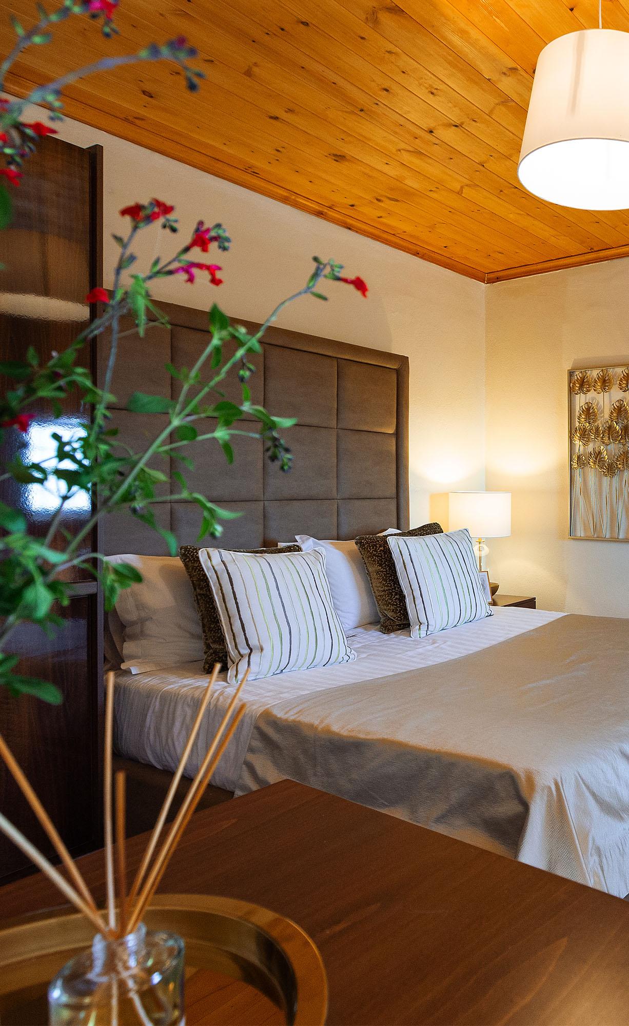 01 argo suites cover